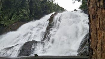Athirapally and Vazhachal Waterfalls Tour by Cab