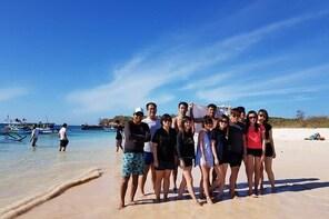 Explore Pink Beach & Snorkeling to Gili Petelu & Gili Gambir