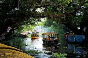 Houseboat Cruise on Alleppey Backwaters from Cochin