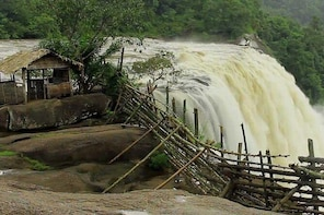 6 Days Kerala Private tour with Athirappilly stay by Khidma Tourism