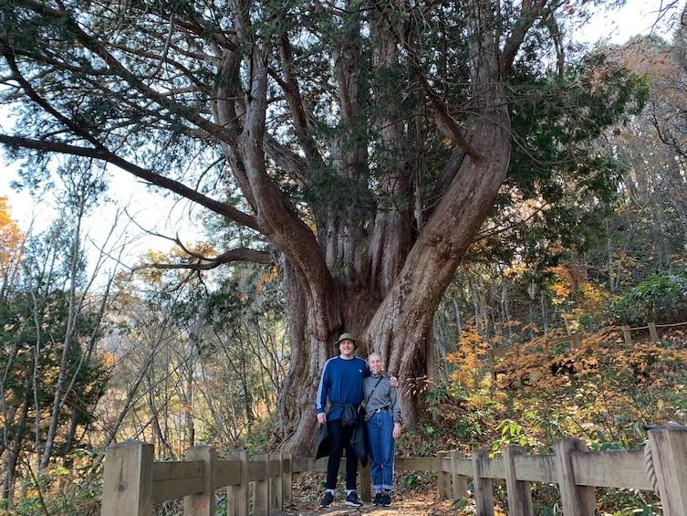 Show item 4 of 7. Shirakawago(UNESCO world heritage)/ Onsen / Hiking (1Day)