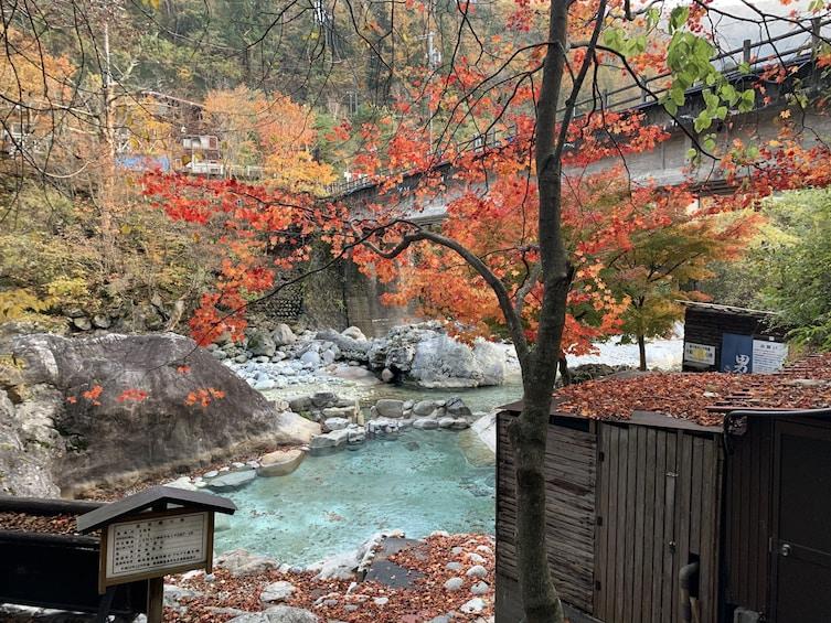 Show item 3 of 7. Shirakawago(UNESCO world heritage)/ Onsen / Hiking (1Day)