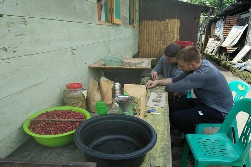 Sumatra Coffee Tour