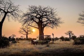 7 Days Safari