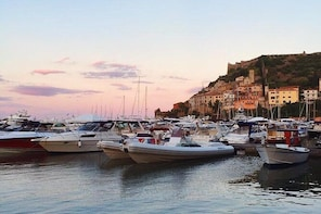 Private Transfer: Civitavecchia Port to Porto Ercole and vice versa