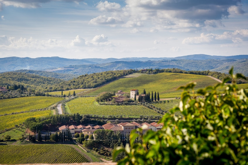 Show item 3 of 10. Tuscany Taster Tour: Round-trip from Rome with Lunch & Wine
