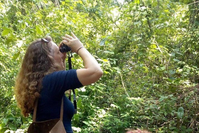 Nature and Birding tours after classes