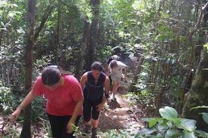 Hiking Trip – Black River Gorges Park