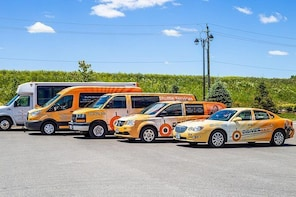 Private shuttle service to local attractions