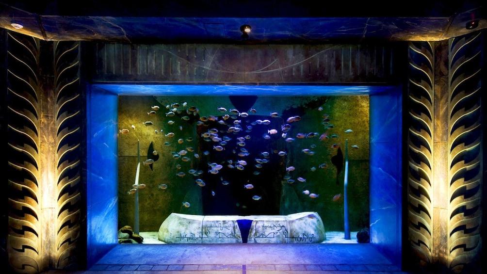 Charger l'élément 3 sur 6. aquarium at Atlantis hotel in Dubai