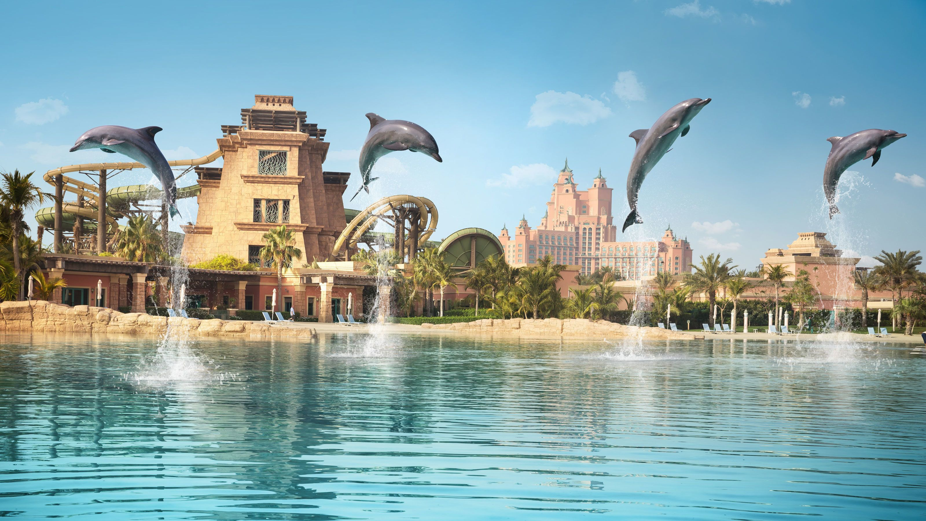 four dolphins leaping from water at waterpark in Dubai
