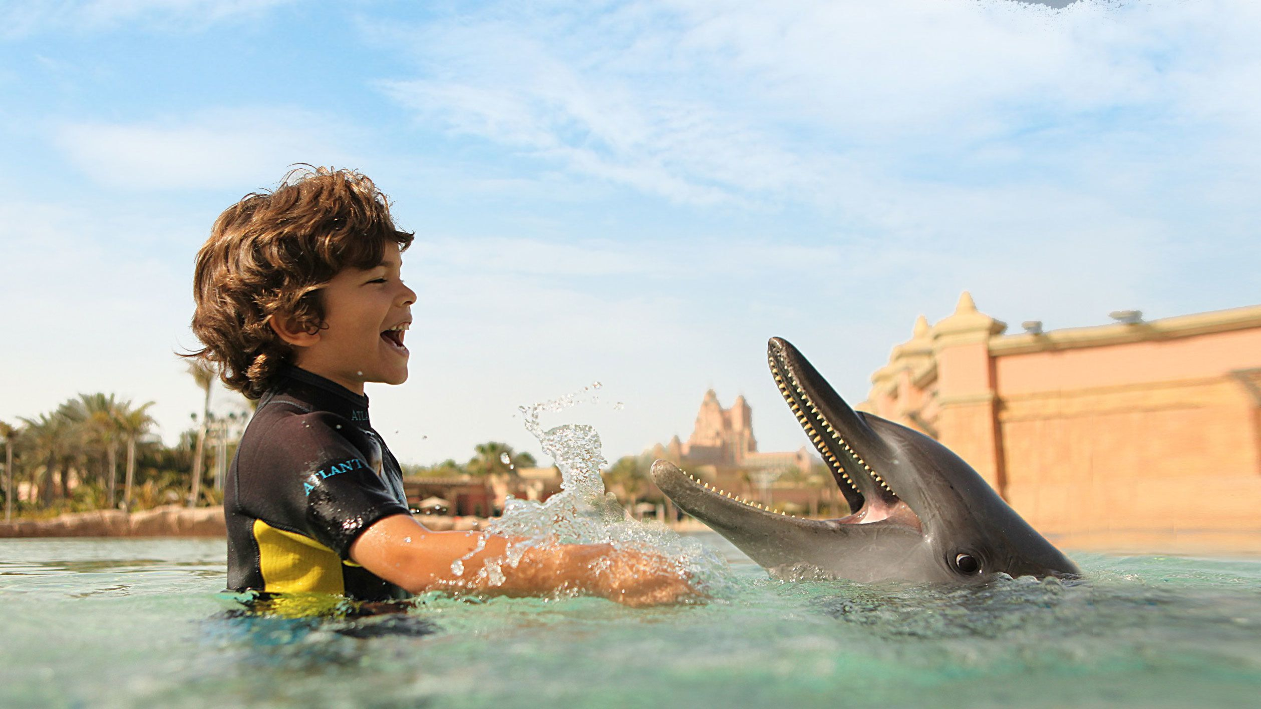 boy playing with dolphin in pool in Dubai