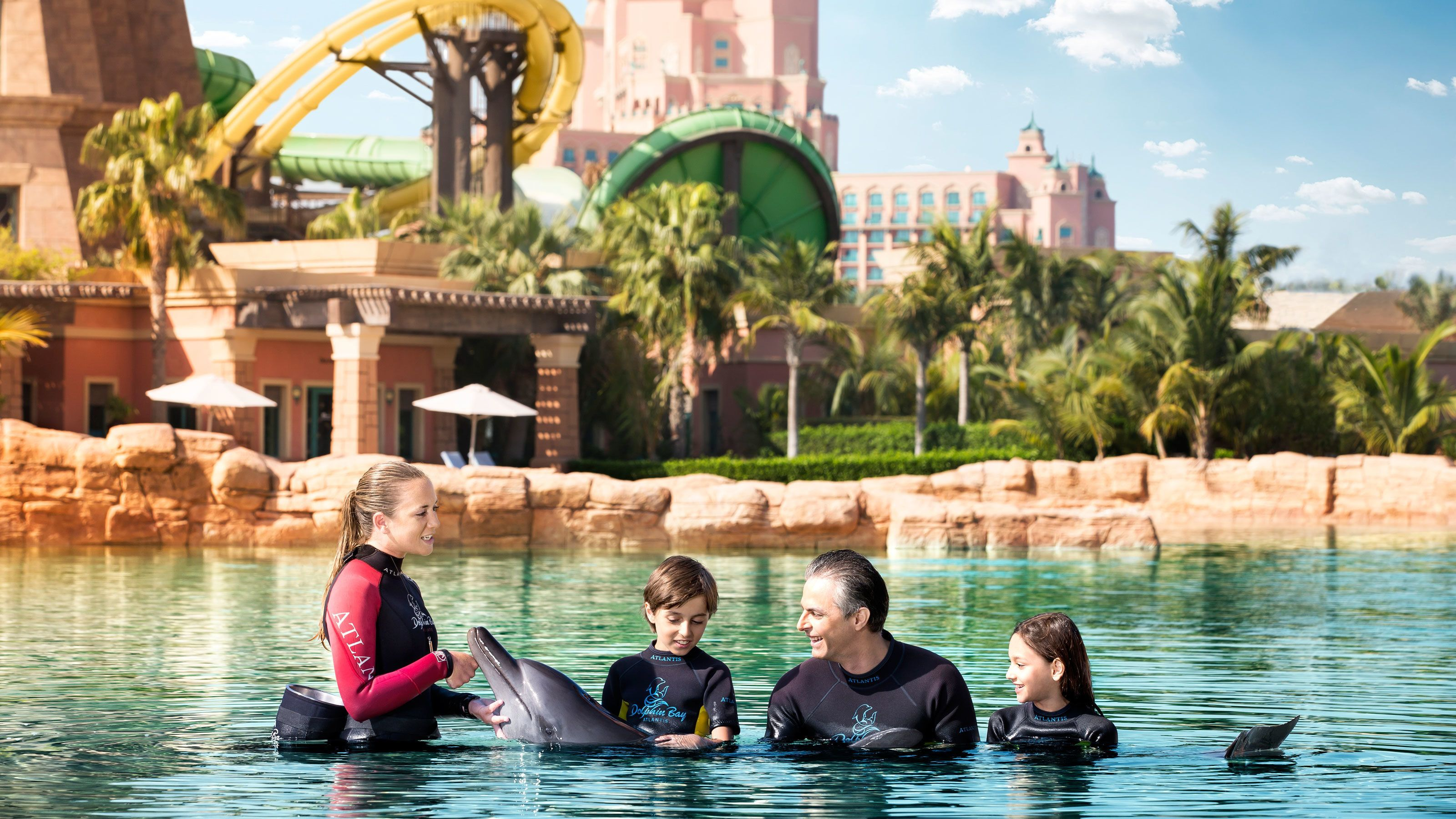 four people in large pool with dolphin in Dubai
