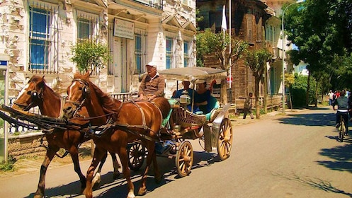 Horse-down carriage tour of Büyük Ada Island in Turkey