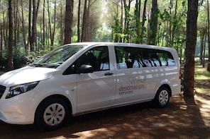 Private Transfer from Bodrum Area to Bodrum-Milas Airport
