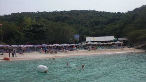 view of the beach at Koh Larn Coral Island from the water