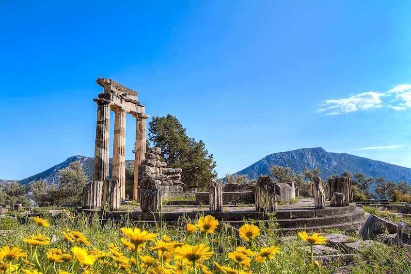 Show item 2 of 10. Ancient Delphi Full-Day Trip