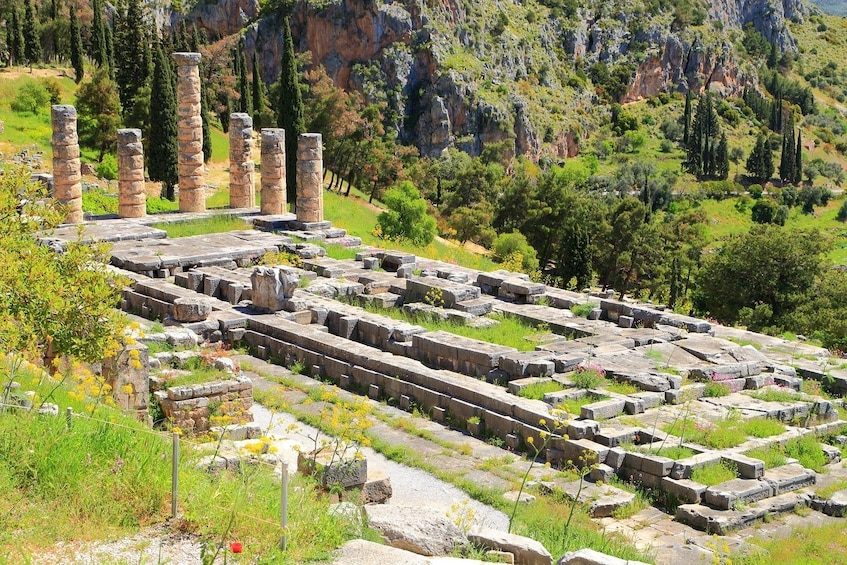 Show item 3 of 15. 2-Tour Combo Saver: Delphi & Epidaurus & Mycenae