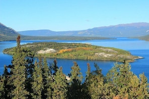 Half-Day Yukon Sightseeing Shore Excursion from Skagway