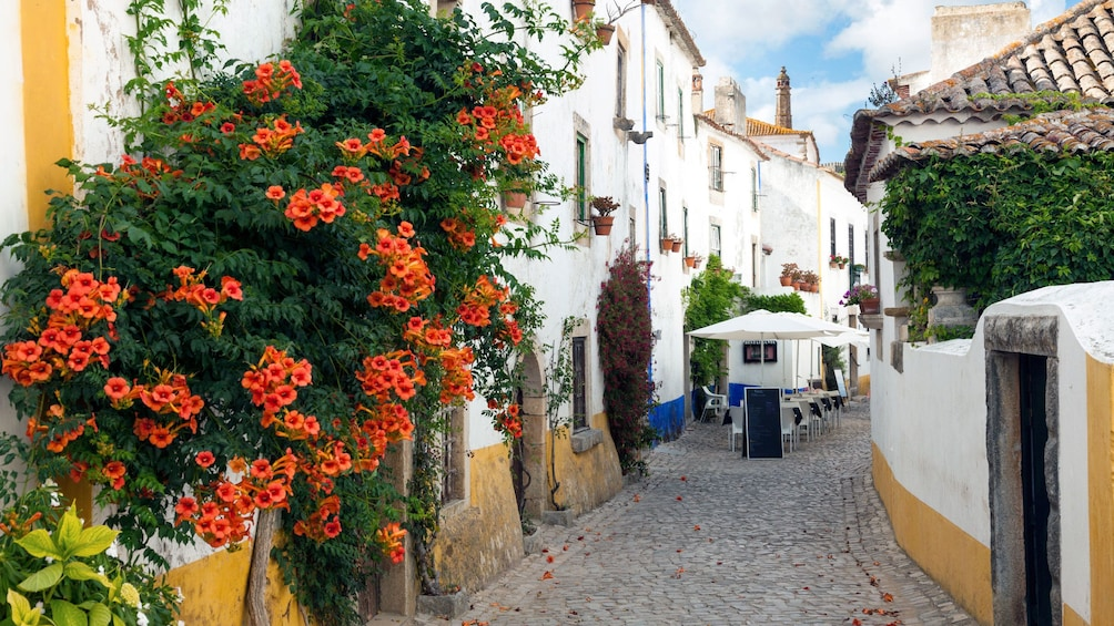 Show item 1 of 5. Streets of Obidos