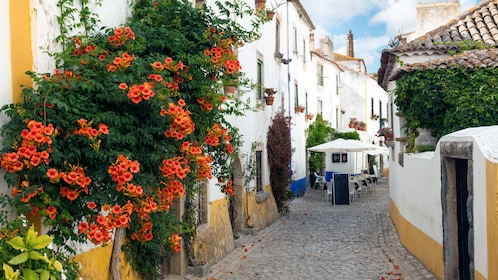 Streets of Obidos