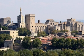Small Groupe Private Excursion to Avignon and Aix en Provence
