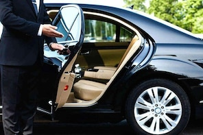 One-Way Private Transfer: from Toronto Pearson Airport to McMaster Universi...