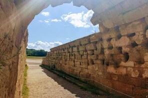Olympia Shore Excursion: Ancient Olympia Plus Honey Farm & Olive Oil Tastin...