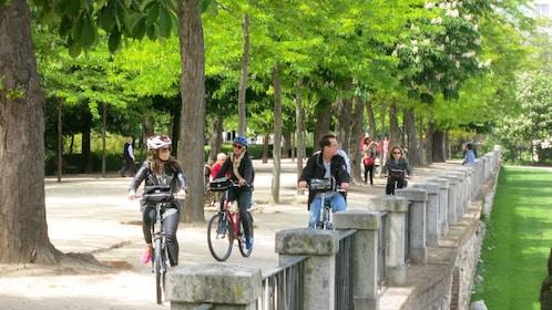 Group of bicyclists enjoying the view of the streets and grand boulevards of Madrid
