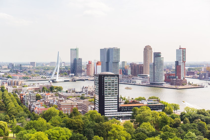 Foto 1 van 10. Rotterdam, Delft & The Hague Full-Day Tour from Amsterdam