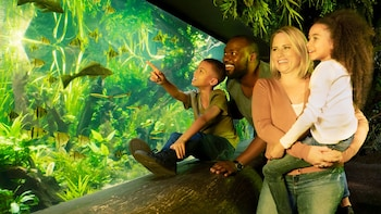 SEA LIFE London Aquarium Billetter