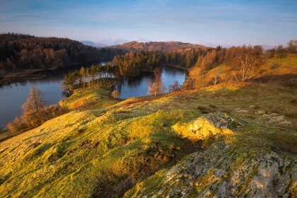 Beatrix Potter - Tarn Hows Landscape.jpg