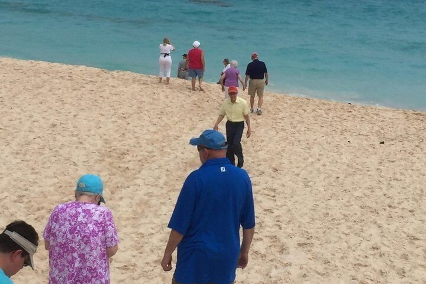 Show item 2 of 3. Walking the Beach