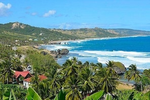 Barbados Island Tour with Lunch and Wildlife Sanctuary