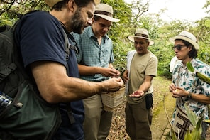 Coffee Farm Experience at Coloma Farm from Bogota