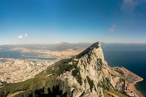 Gibraltar private Shore Excursion: 3.5 hours Rock Tour