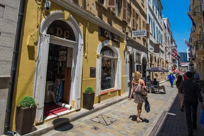 Gibraltar private Shore Excursion: 3.5 hours Rock Tour