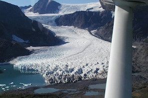 Bear Glacier Private Flight Tour from Seward