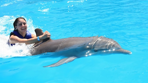 woman riding on dolphin's dorsal fin in Los Cabos