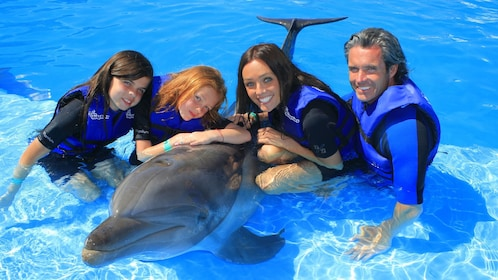 four people together with a dolphin in Los Cabos
