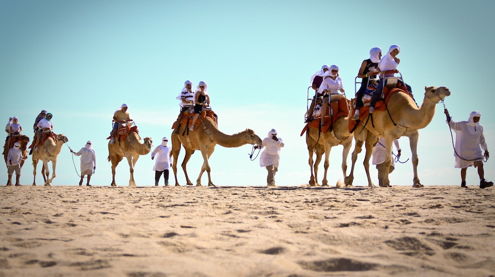 Show item 5 of 10. line of camels and riders in desert sand in Los Cabos