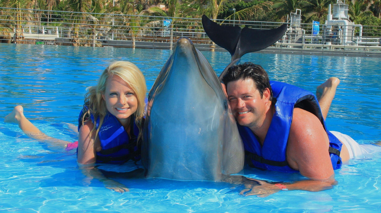 Interactive Dolphin Encounter