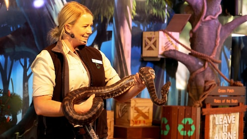 Staff member talking about snakes at show at Currumbin Wildlife Sanctuary in Gold Coast