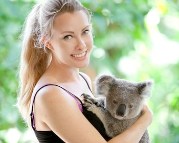 CWS koala Hold.jpg
