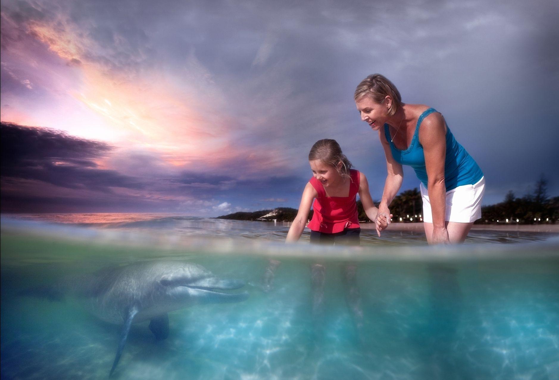 Dolphin feeding comp dusk landscape v2.jpg