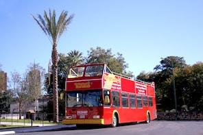 San Antonio Hop-On Hop-Off Bus Tour