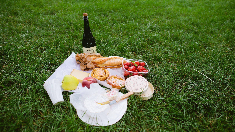 Picnic at Giverny