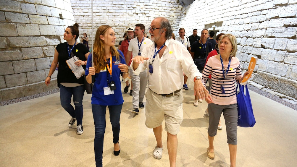 Louvre Semi Private: Comprehensive tour with Skip the line