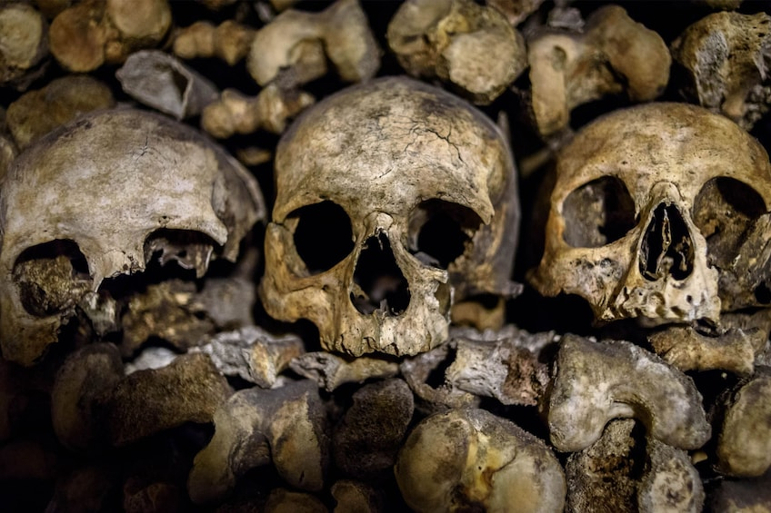 Foto 3 van 10. Skip-the-Line: Paris Catacombs Guided Tour with VIP Access