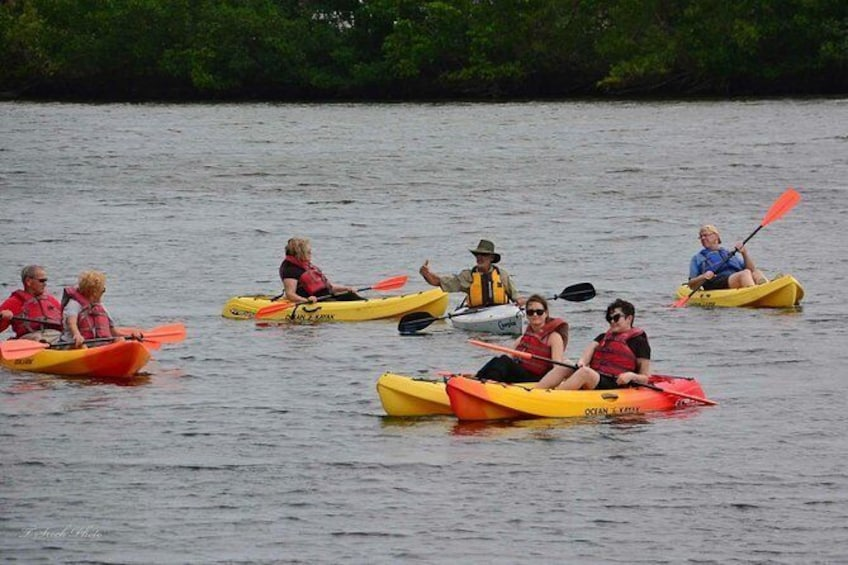 Show item 5 of 6. Guided Kayak Tour- Manatee and Dolphin sightings